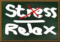 Minimize Stress and Cortisol Levels
